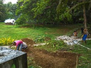 start-tropical-garden
